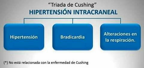 Triada de Cushing | I Love Medicine | Pinterest