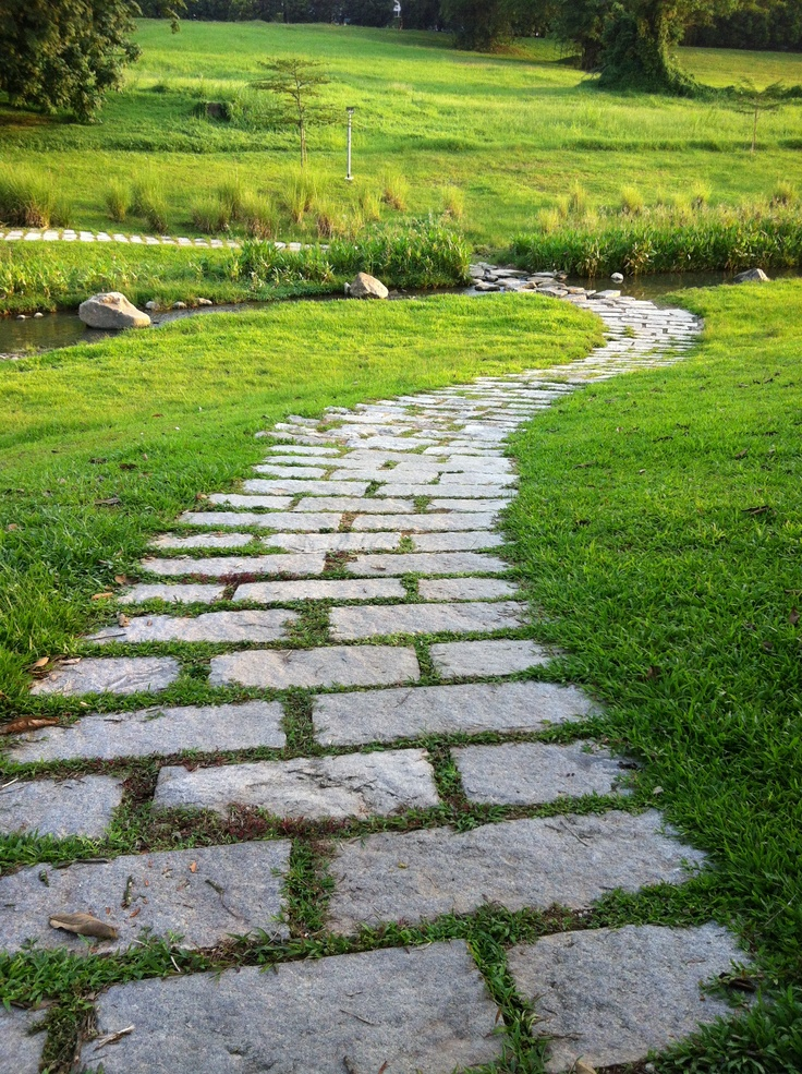 Nature's pathway to a dream