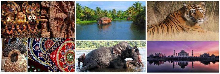 desiakoraput.com offers travelers an array of tours such as adventure tour, wildlife tour and religious trip.