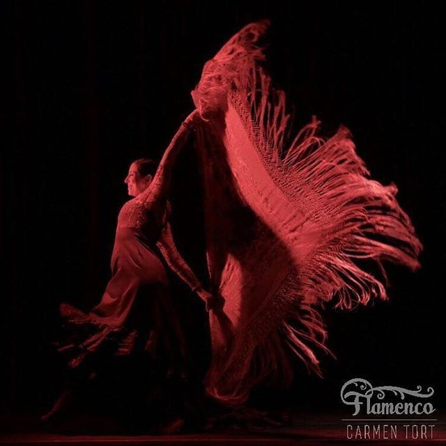 Feliz día del fotógrafo en Colombia. Gracias por capturar momentos que emocionan @eydelmarb  #manton #diadelfotografo #colombiaflamenca - - - #carmentortflamenco #flamenco #bailaora #flamenca #baileflamenco #flamencodance #flamencodancer #flamencodancing #baile #dance #dancer #danza #flamencogirl #flamencoteacher #followme #flamencophotography #flamencocolombia #flamencobogota #flamencocartagena #flamencoencali #flamencomedellin #flamencobarranquilla #flamencospain #flamencomexico…