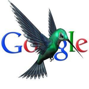Comment Google Colibri algorithme marche? Comment peuvez vous augmenter votre visibilite sue Google?