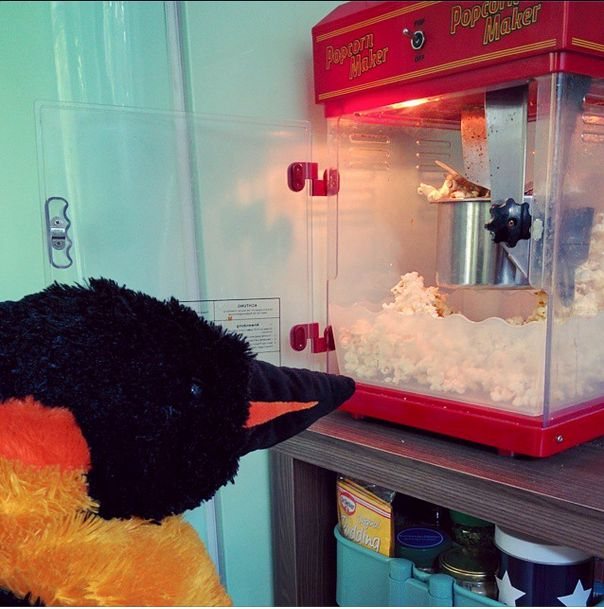 mr & mrs pungu are having a relaxing movie sunday with lots of popcorn. first film on the list? happy feet, of course! #penguin #penguins #pinguin #pinguine #pinguino #pinguinos #pinguim #pingouin #pingüino #ペンギン #пингвин #펭귄 #instabird #antarctica #stuffedanimal #pingu #penguinlove #pinguinito #montythepenguin #johnlewis #johnlewisadvert #montypenguin #monty #popcorn #popcornmaker #popcornmachine #snack #snackfood #hungry