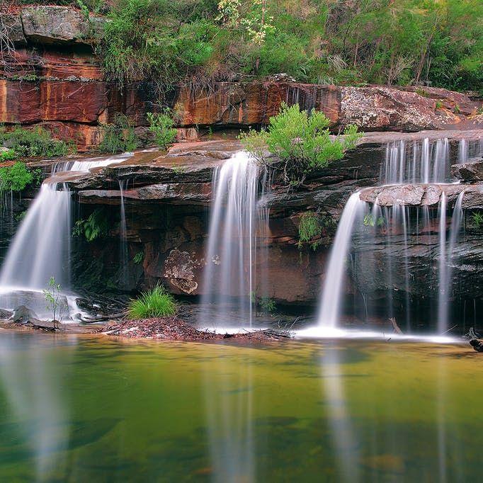Winifred Falls Royal National Park Waterfall Royal National National Parks