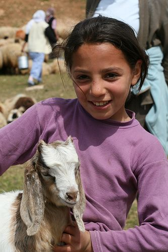 Young girl with flock in SE Turkey near to Mardin