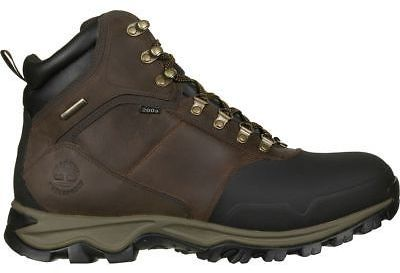 Timberland Mt. Maddsen 6in Waterproof Insulated Boot - Men's