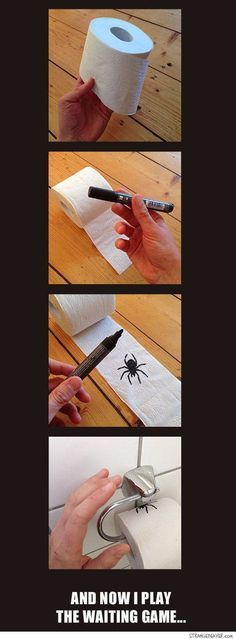 Toilet Paper Spider Prank
