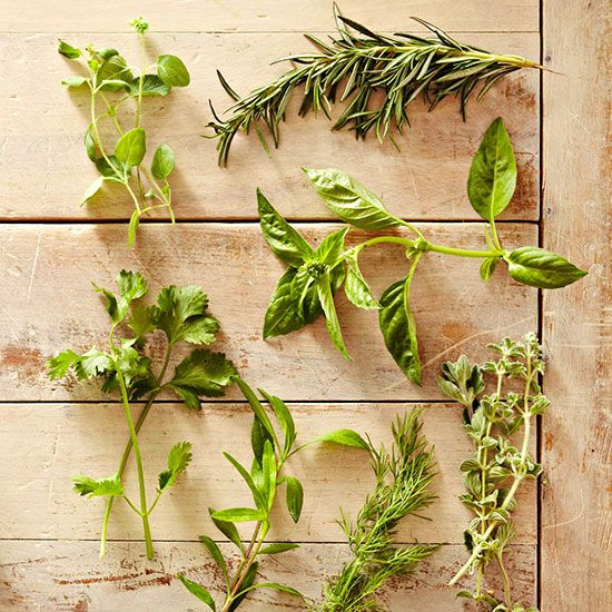 Freezing herbs is fast and easy. Learn how to freeze herbs, which ones are great for freezing, and our overall freezing tips.
