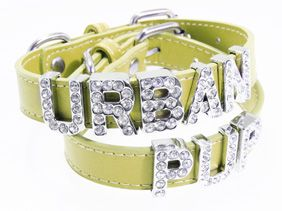 Primrose Leather Personalised Dog Collar (Diamante Letters) | Dog Collar & Lead Sets at UrbanPup.ie