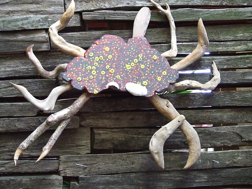 Crab Farm: Driftwood art by Tony & Leah aka Lord and Lady Macca