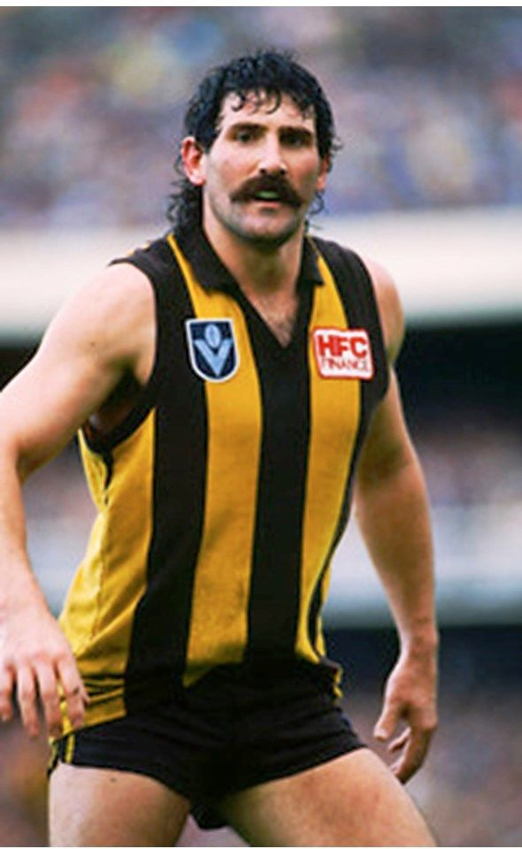 Robert DiPierdomenico. 1975-1991. Games Hawthorn 240. Brownlow medal 1986. Premiership player 1978, 1983, 1986, 1988, 1989.