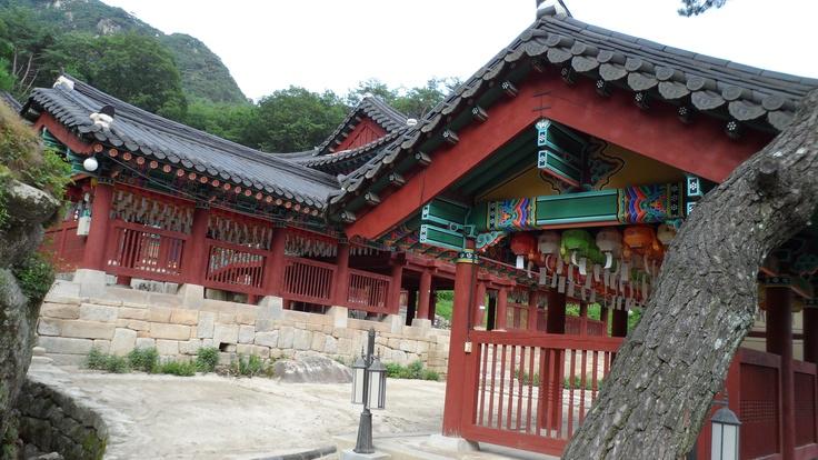 한국카메라 한국을 담다-1일차  Photo by LeeJuDot / Samsung MV800 / in 춘천  Detail : http://www.cyworld.com/LeeJuDot/3468282