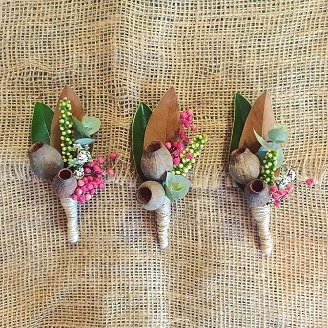 Australian native buttonholes made for a recent wedding by a current Cert III student #Pearsonsschool #pearsons #floristry #flowerstagram #buttonholes #studentsintheindustry #natural #gumnuts #magnolia #gum #nativeflora #wedding