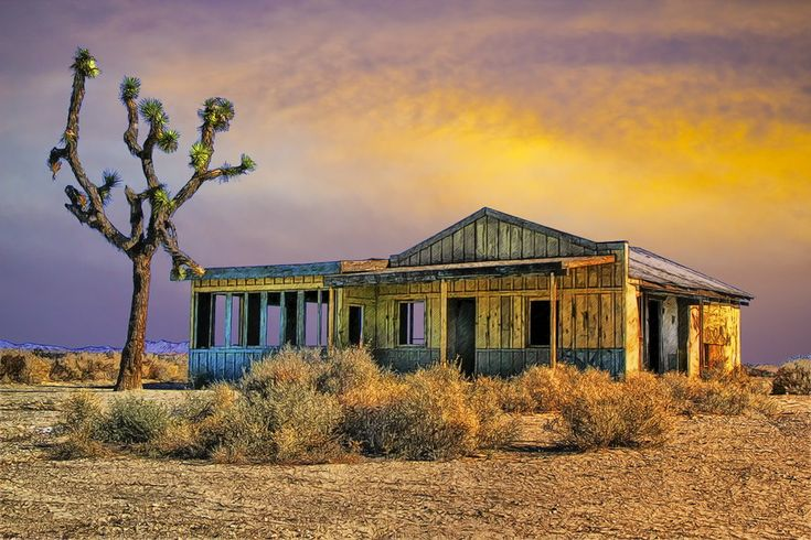 An old abandoned diner near El Mirage, California, a little town with a few inhabitants in the Mojave Desert.