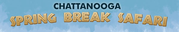 2012 Spring Break Safari in Chattanooga, Tennessee  Anytime is a great time in Chattanooga but here's a great spring break opportunity.
