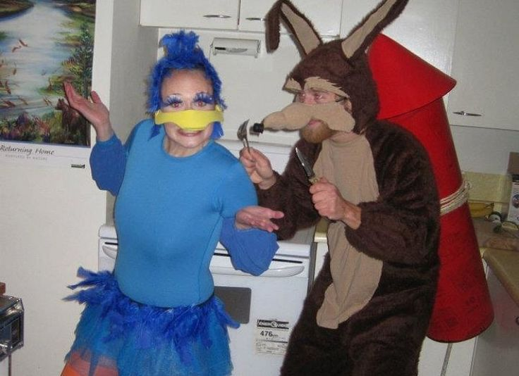 Wiley E Coyote And Road Runner Halloween Costume Ideas