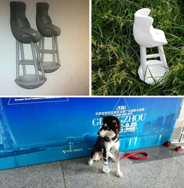 Yogo the Dog receives successful 3D printed leg prosthesis