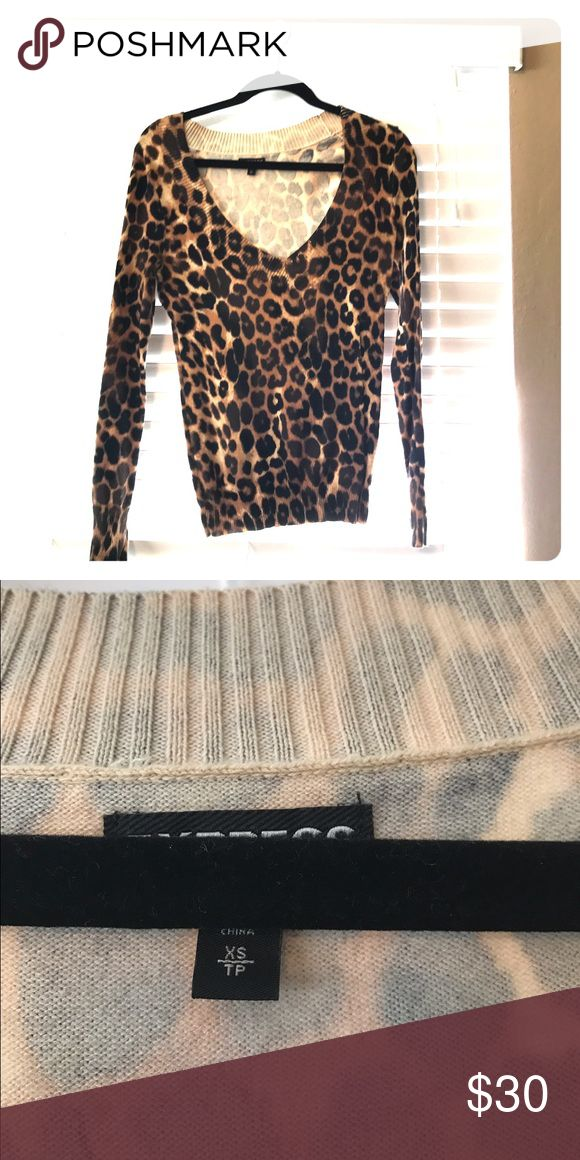 Animal print long sleeve top Leopard print long sleeve top Express Tops Blouses