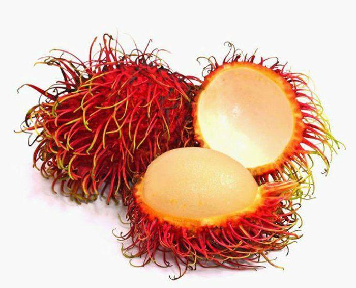 Tropische Früchte und Gemüse geniessen