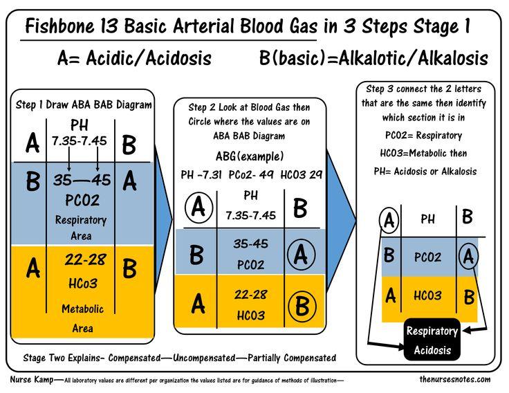 Best 25+ Arterial blood gases nursing ideas on Pinterest