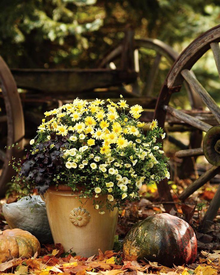 Hgtv Garden Design Ideas: 1000+ Images About HGTV Fall House On Pinterest