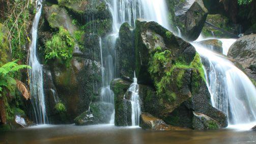 Keppel Falls Walk, Yarra Valley and Dandenong Ranges, Victoria, Australia