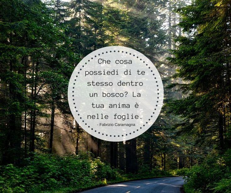 Quote by Fabrizio Caramagna  #quotes #quote #aforismi #nature #natura #flowers #citazioni #naturequotes #FabrizioCaramagna