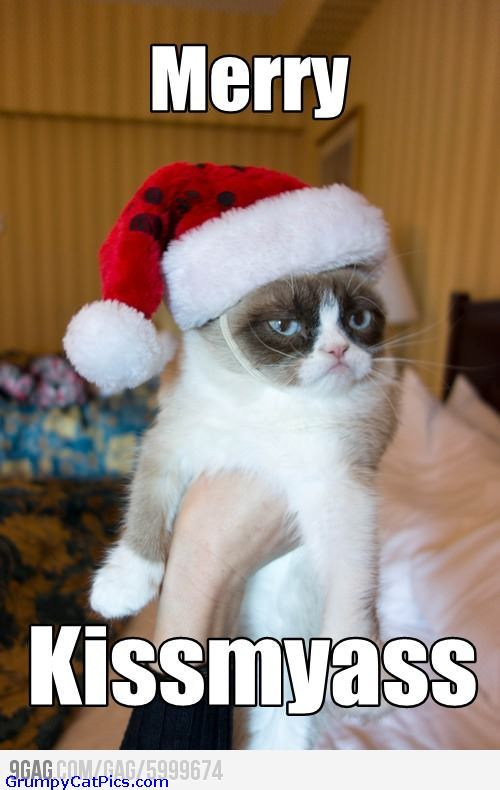 Grumpy Cat Strikes Again For Christmas Very Funny Cute Sarcastic ...