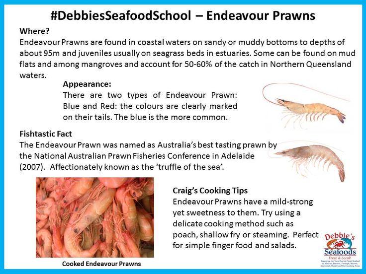 Endeavour Prawns #DebbiesSeafoodSchool