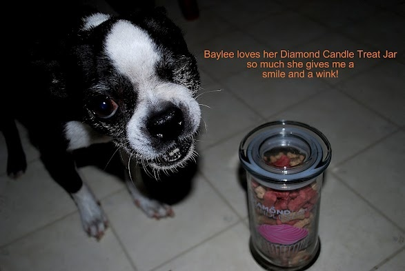 Diamond Candle Jar Reuse Idea. This dog loves the idea of his treats being held in an old Diamond Candle jar!: Candle Jar Reuse, Reuse Idea, Diamond Candles, Diamondcandles Enterdazzlemeup, Dog Treat Jar, Baylee S Treats, Craft Ideas, Candle Jars, Dog Treats