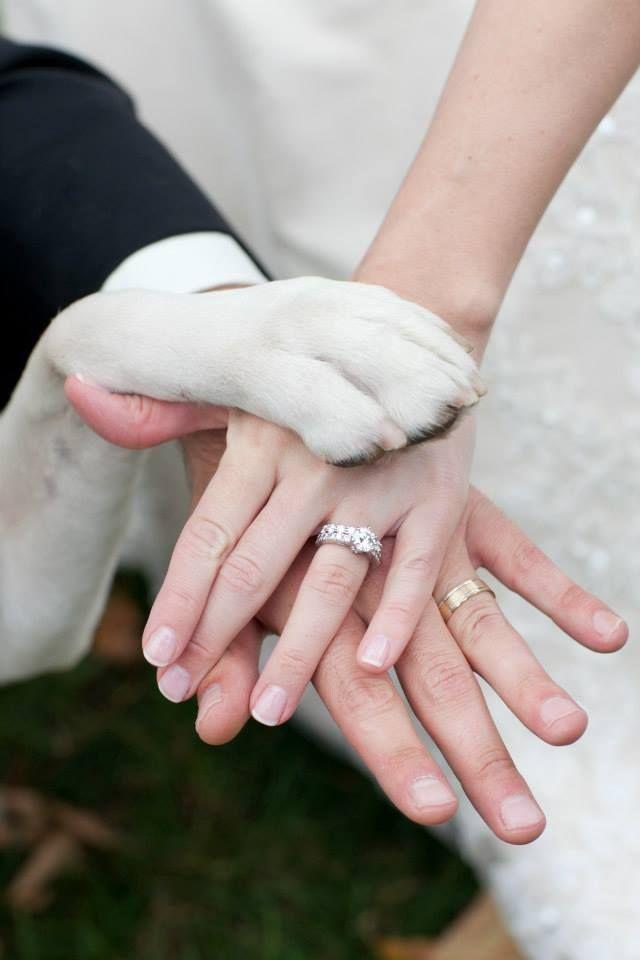 trouwfoto met hond