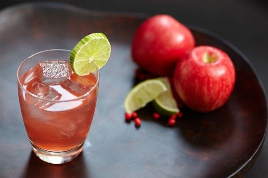 GORDON'S SLOE GIN & APPLE JUICE... This adds an autumnal touch to gin and apple juice, the tart fruitiness of Gordon's Sloe Gin blending with the sharp, sweet apple flavour for a great party serve.