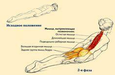 Всего одно упражнение от сутулости | Новость | Всеукраинская ассоциация пенсионеров