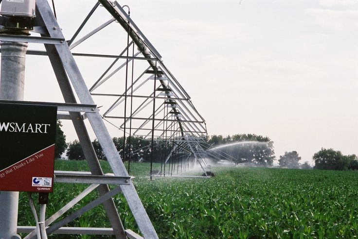 Zimmatic centre pivot irrigating corn, NSW Australia. A project by TEAM Irrigation
