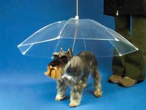 Dog Umbrella: If you're tired of walking your dog in the rain and returning home with your dog dripping wet, then you need a Dog Umbrella. The Dog Umbrella is a see through umbrella that also works as a leash, keeping your dog in your control and out of the rain.