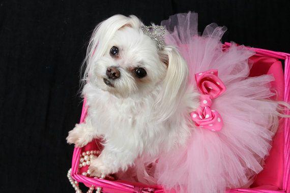 Dog Tutu: Baby Pink Doggie Tutu Small Medium by EllieGraceCrafts