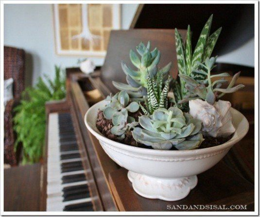 24 Cheap Planter Ideas For Amazing Succulent Garden Diy