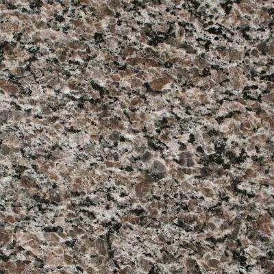 3 in. Granite Countertop Sample in New Caledonia