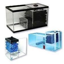 Картинки по запросу marine aquarium design