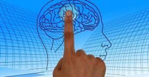 Cerveau et pédagogie : des principes réellement soutenus par la science