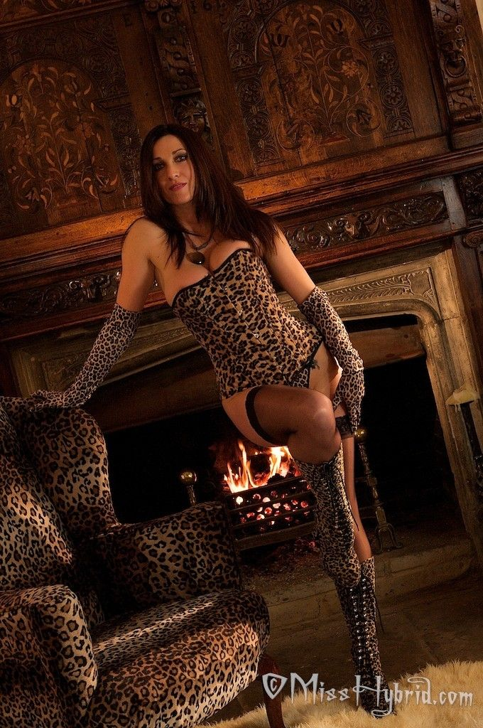 Sexy leopard corset and boots