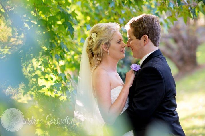 wedding photography maleny