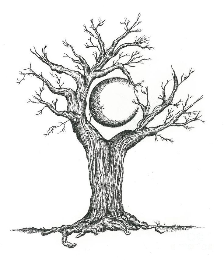 This drawing is of a crescent moon surrounded by the tree ...