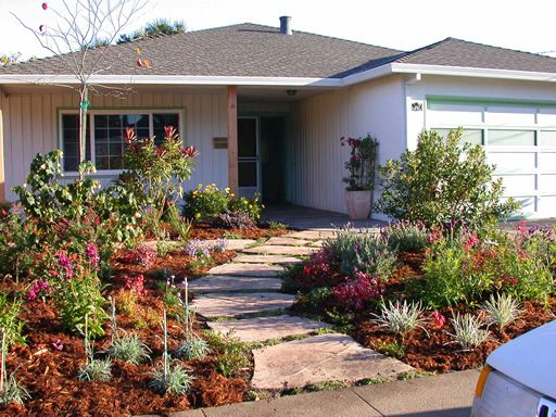 12 best images about drought tolerant landscaping on for Front yard plant ideas