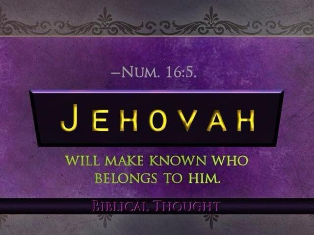 Jw org Am (See It)