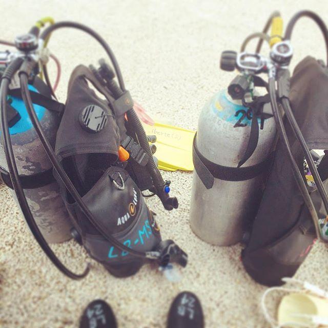 【miii_do_ri】さんのInstagramをピンしています。 《やっぱり潜らなきゃ♡ 朝から2本🤗 楽しかったー! . . #ダイビング #沖縄 #スキューバダイビング #海 #空 #太陽 #自然 #旅行 #休暇 #インストラクター #diving #divingtrip #vacation #holiday #ocean #sun #beach #sea #trip #japan #instructor #nature #landscape #beauty #okinawa》