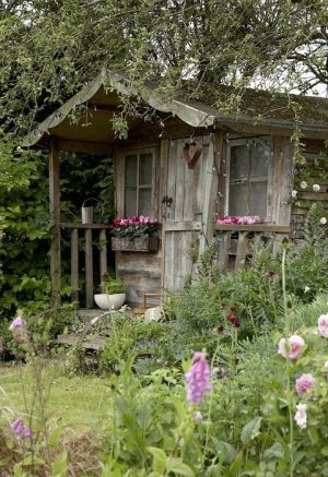 Pretty shed, surrounded by cottage garden planting.