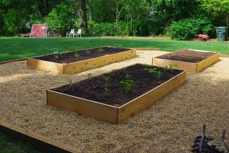 New Cedar Raised Vegetable Garden With Pea Gravel Path Www Hawkinsla Com Due Fenced Vegetable Garden Raised Vegetable Gardens Raised Vegetable Garden Plans