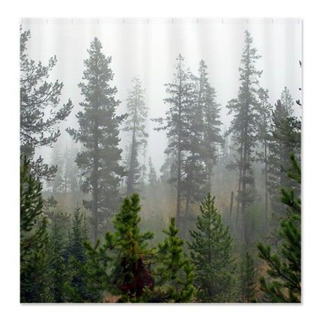Misty forest Shower Curtain, put in front of room under my bed to feel like i'm in the forest!
