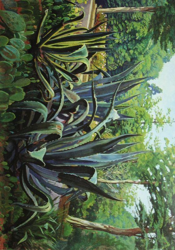 """61. Жилинский Дмитрий """"Агавы"""" 1982 Картон, темпера 56х77,5 Нижнетагильский музей изобразительных искусств"""