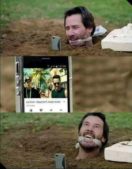 videoswatsapp.com imagenes chistosas videos graciosos memes risas gifs graciosos chistes divertidas humor gato tom http://chistegraficos.tumblr.com/post/169299328581/imagenes-de-risa